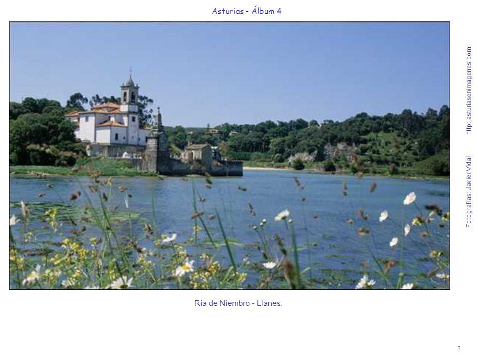 8 Asturias - Álbum 4 Fotografías: Javier Vidal http: asturiasenimagenes.com Playa de Barro (Llanes), a 45 de Gijón - Bandera Azul 2007.