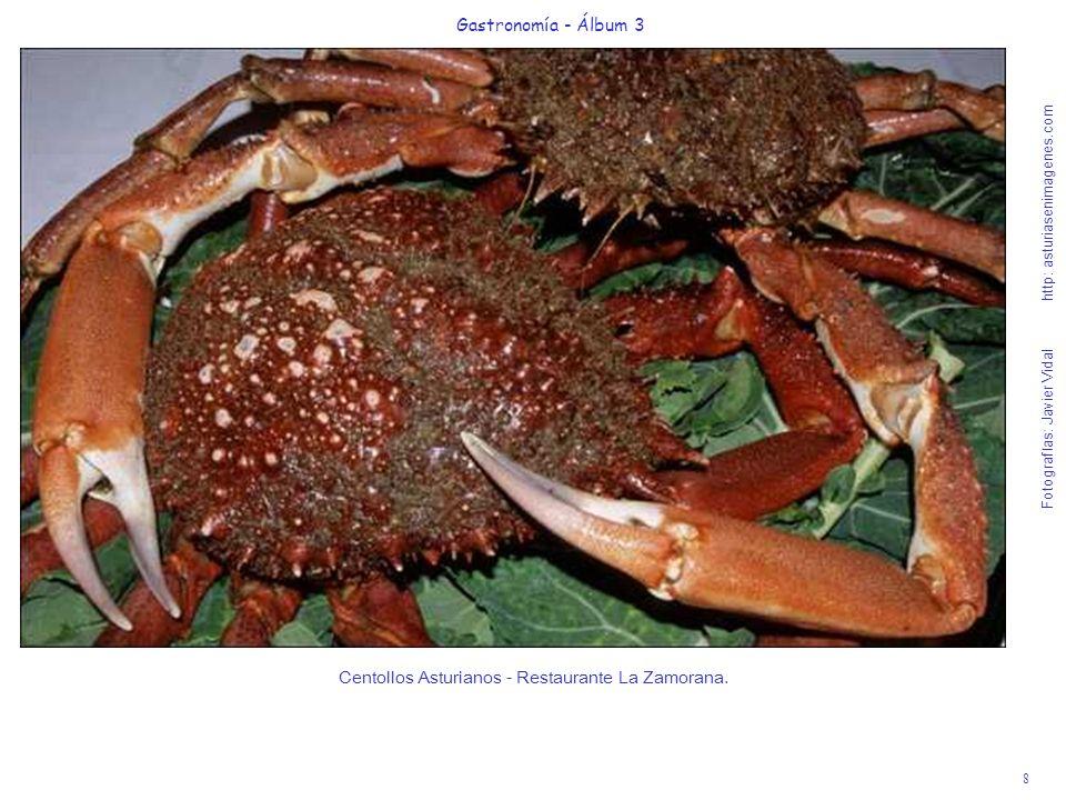 8 Gastronomía - Álbum 3 Fotografías: Javier Vidal http: asturiasenimagenes.com Centollos Asturianos - Restaurante La Zamorana.