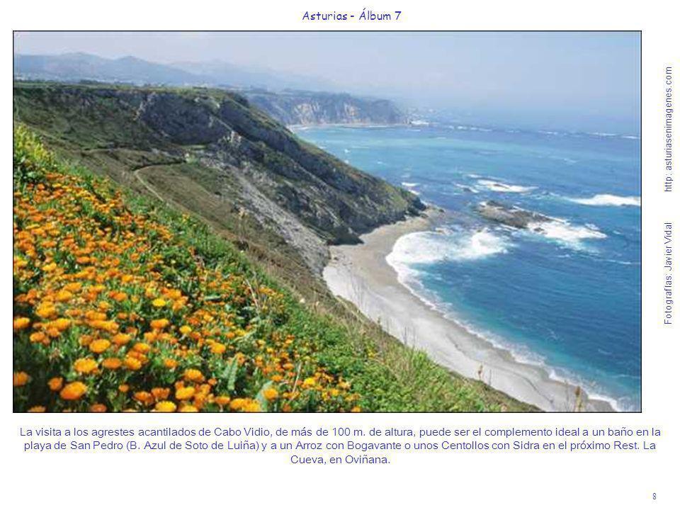 8 Asturias - Álbum 7 Fotografías: Javier Vidal http: asturiasenimagenes.com La visita a los agrestes acantilados de Cabo Vidio, de más de 100 m. de al