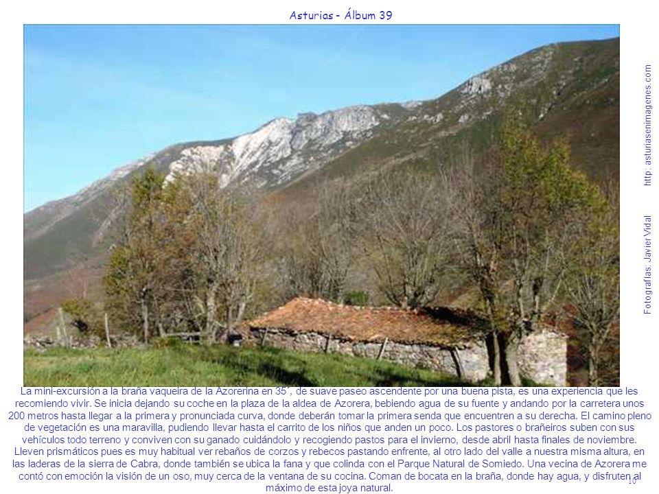 10 Asturias - Álbum 39 Fotografías: Javier Vidal http: asturiasenimagenes.com La mini-excursión a la braña vaqueira de la Azorerina en 35´, de suave p