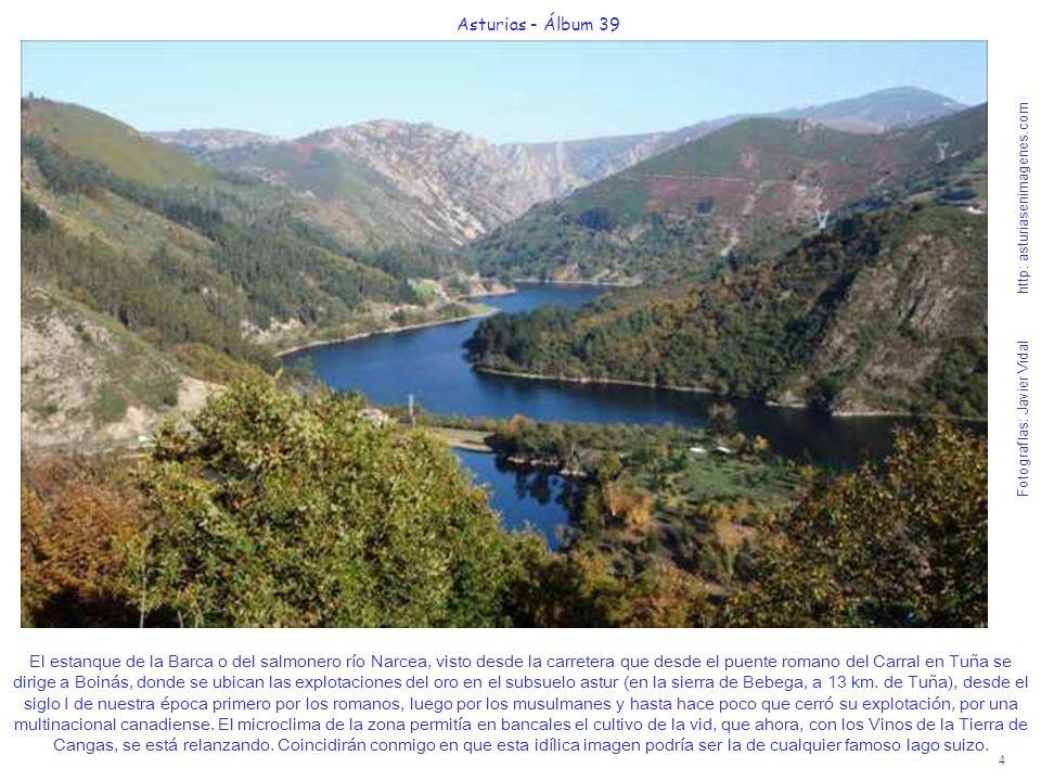 4 Asturias - Álbum 39 Fotografías: Javier Vidal http: asturiasenimagenes.com El estanque de la Barca o del salmonero río Narcea, visto desde la carret