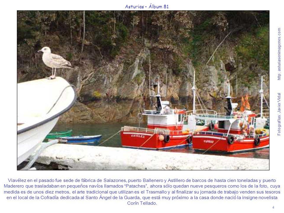 4 Asturias - Álbum 81 Fotografías: Javier Vidal http: asturiasenimagenes.com Viavélez en el pasado fue sede de fábrica de Salazones, puerto Ballenero