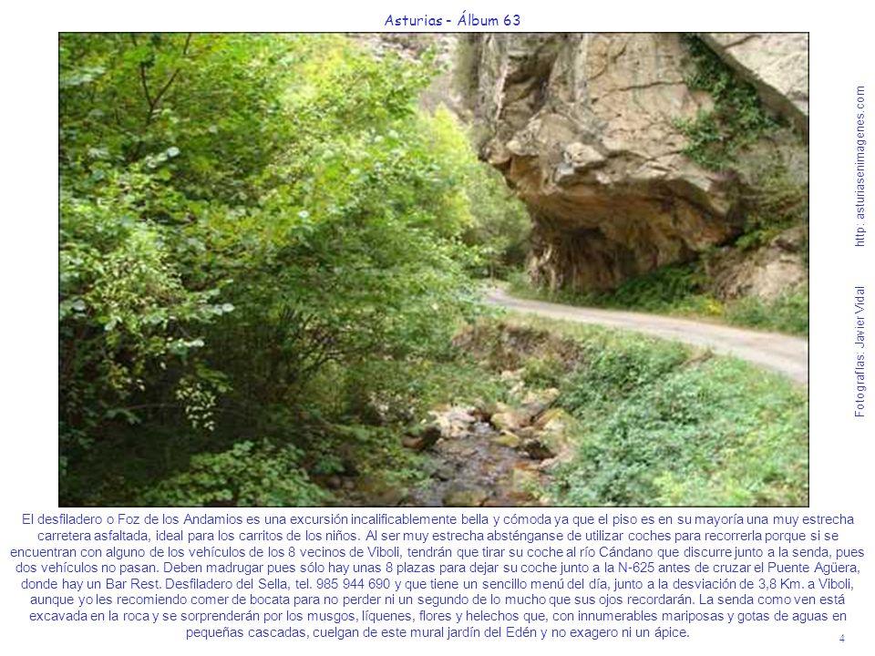 4 Asturias - Álbum 63 Fotografías: Javier Vidal http: asturiasenimagenes.com El desfiladero o Foz de los Andamios es una excursión incalificablemente