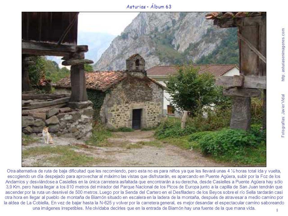 8 Asturias - Álbum 63 Fotografías: Javier Vidal http: asturiasenimagenes.com Otra alternativa de ruta de baja dificultad que les recomiendo, pero esta