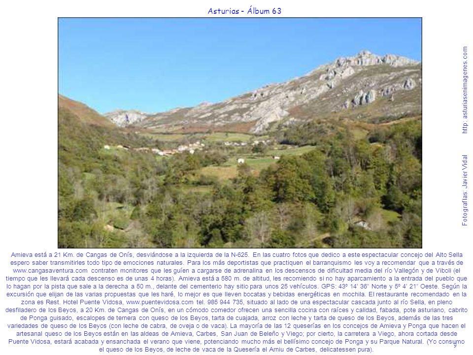 9 Asturias - Álbum 63 Fotografías: Javier Vidal http: asturiasenimagenes.com Amieva está a 21 Km. de Cangas de Onís, desviándose a la izquierda de la