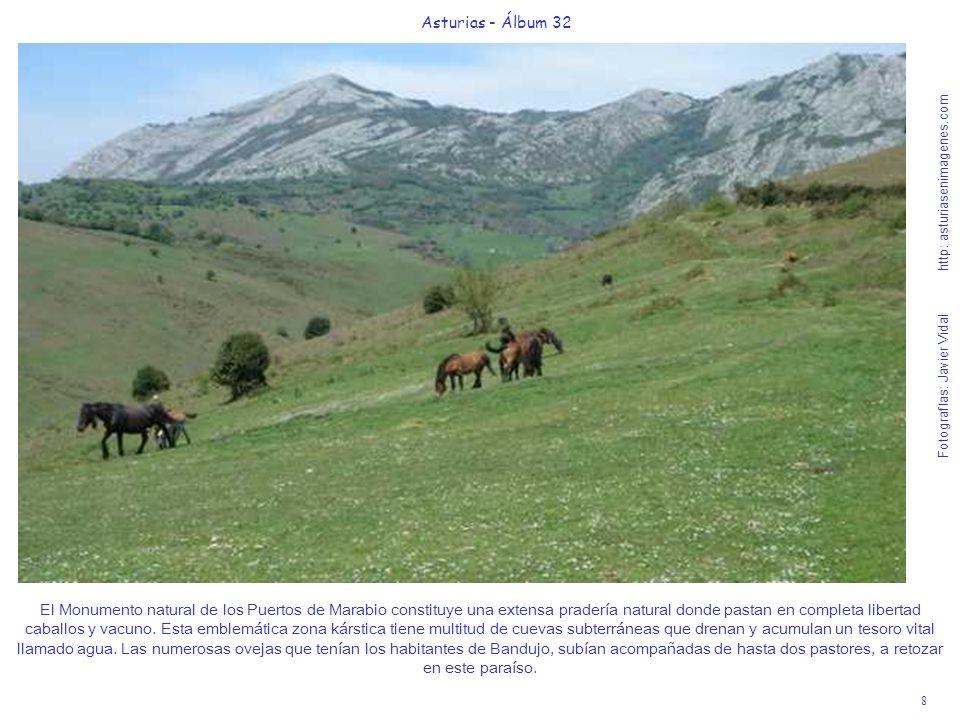 8 Asturias - Álbum 32 Fotografías: Javier Vidal http: asturiasenimagenes.com El Monumento natural de los Puertos de Marabio constituye una extensa pra
