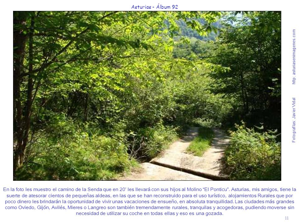 11 Asturias - Álbum 92 Fotografías: Javier Vidal http: asturiasenimagenes.com En la foto les muestro el camino de la Senda que en 20 les llevará con sus hijos al Molino El Ponticu.