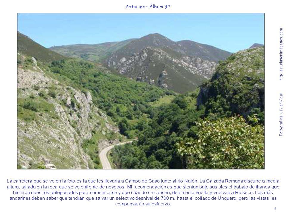 4 Asturias - Álbum 92 Fotografías: Javier Vidal http: asturiasenimagenes.com La carretera que se ve en la foto es la que les llevaría a Campo de Caso junto al río Nalón.