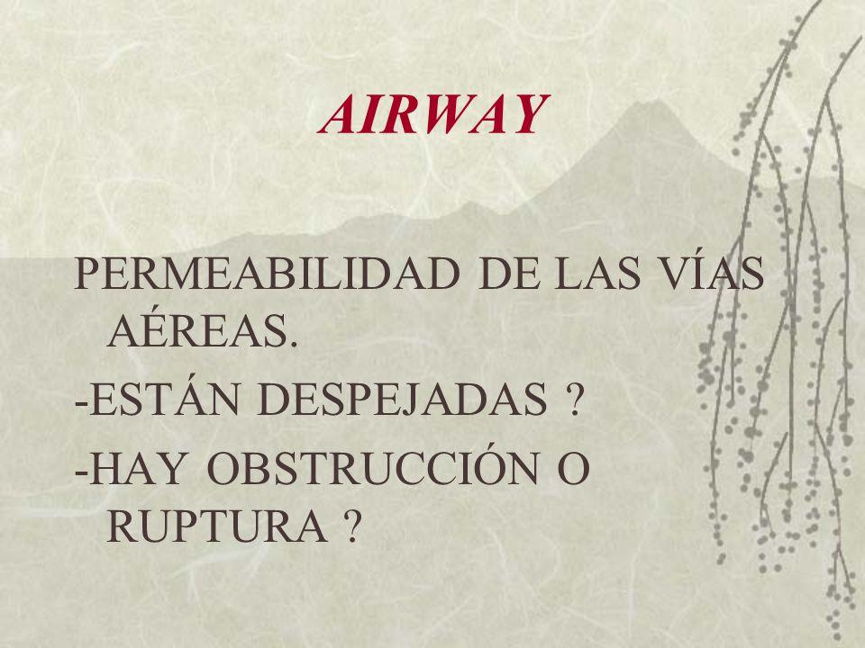 AIRWAY PERMEABILIDAD DE LAS VÍAS AÉREAS. -ESTÁN DESPEJADAS ? -HAY OBSTRUCCIÓN O RUPTURA ?