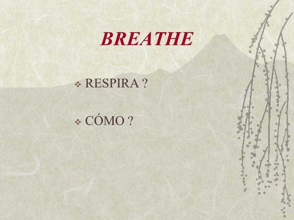 BREATHE RESPIRA ? CÓMO ?