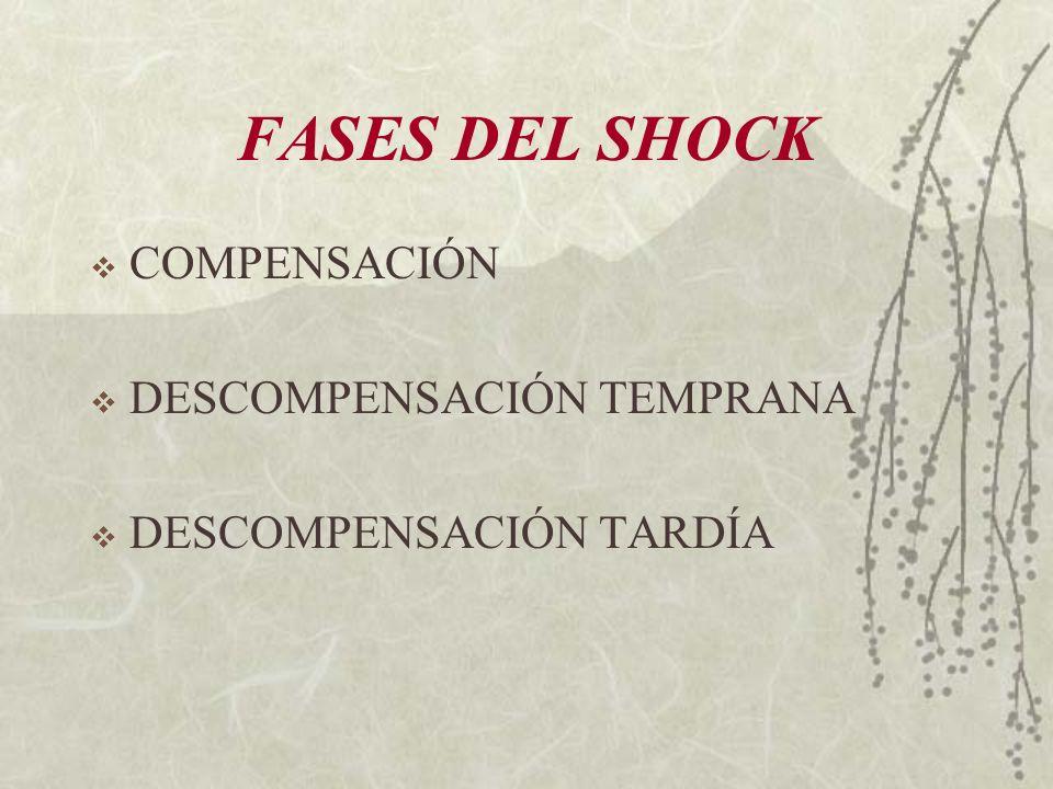 FASES DEL SHOCK COMPENSACIÓN DESCOMPENSACIÓN TEMPRANA DESCOMPENSACIÓN TARDÍA