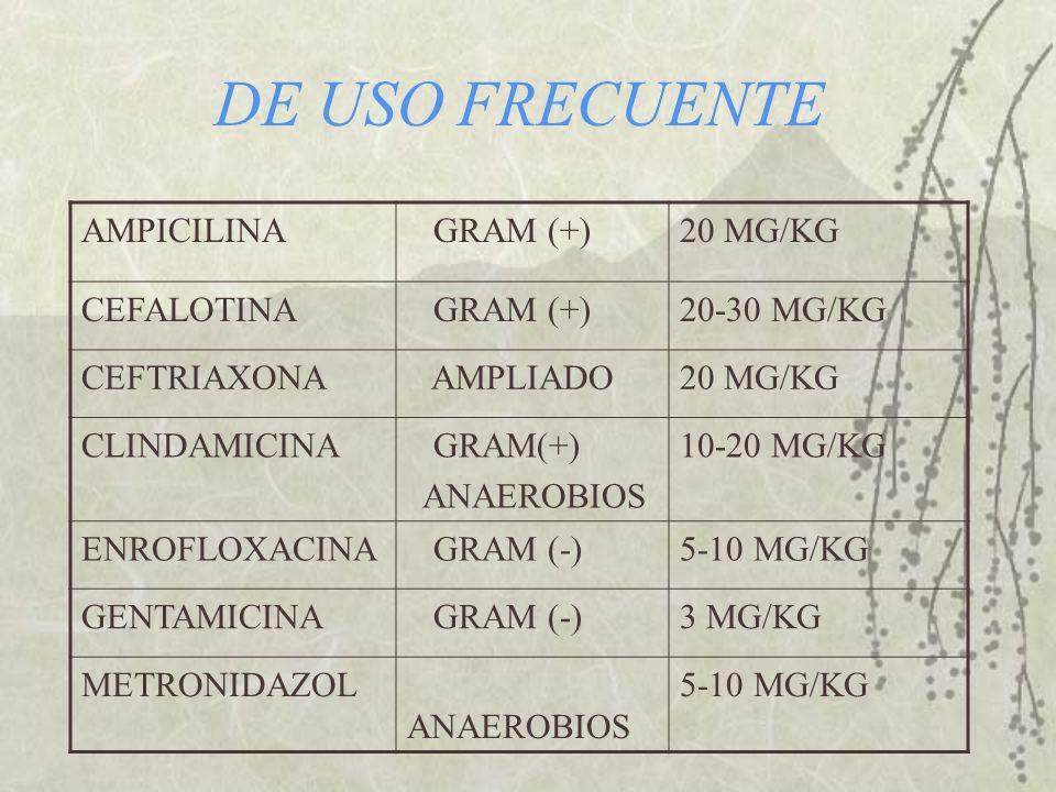 DE USO FRECUENTE AMPICILINA GRAM (+)20 MG/KG CEFALOTINA GRAM (+)20-30 MG/KG CEFTRIAXONA AMPLIADO20 MG/KG CLINDAMICINA GRAM(+) ANAEROBIOS 10-20 MG/KG E
