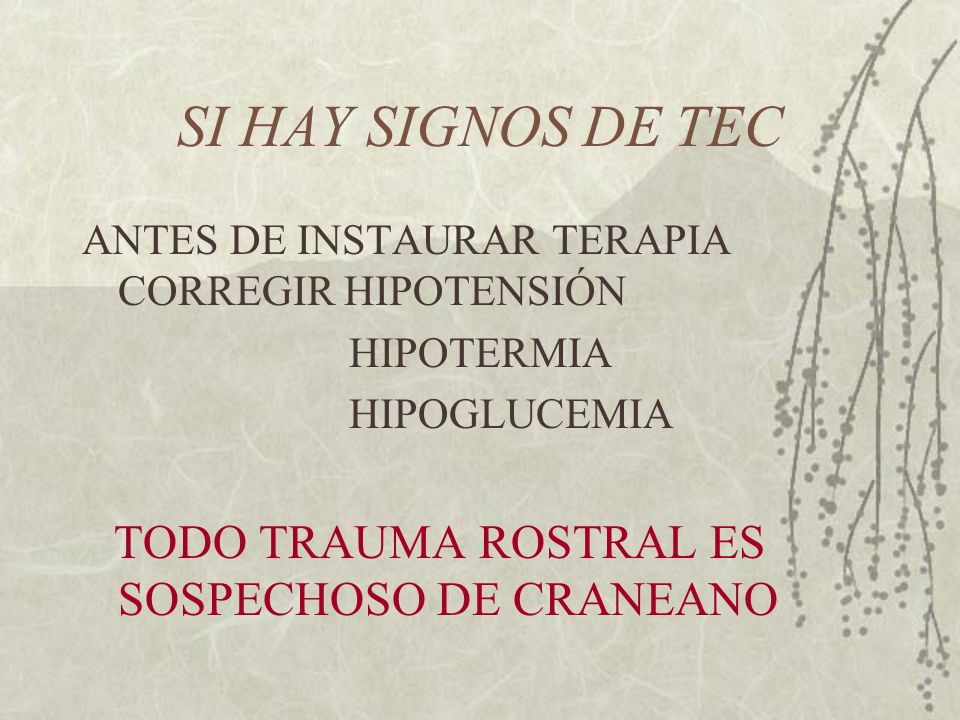 SI HAY SIGNOS DE TEC ANTES DE INSTAURAR TERAPIA CORREGIR HIPOTENSIÓN HIPOTERMIA HIPOGLUCEMIA TODO TRAUMA ROSTRAL ES SOSPECHOSO DE CRANEANO