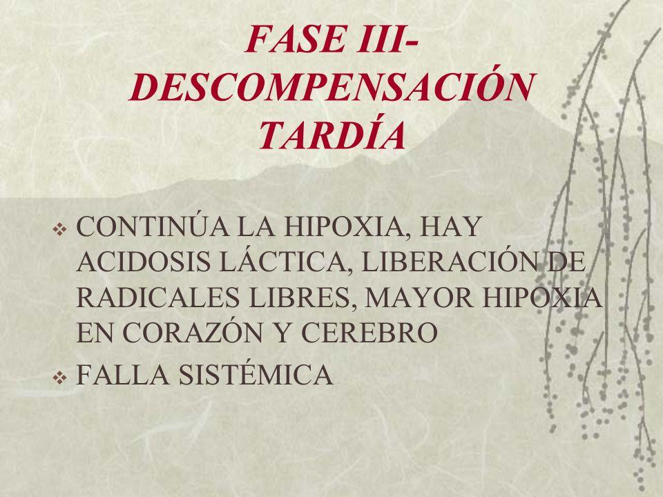 FASE III- DESCOMPENSACIÓN TARDÍA CONTINÚA LA HIPOXIA, HAY ACIDOSIS LÁCTICA, LIBERACIÓN DE RADICALES LIBRES, MAYOR HIPOXIA EN CORAZÓN Y CEREBRO FALLA S