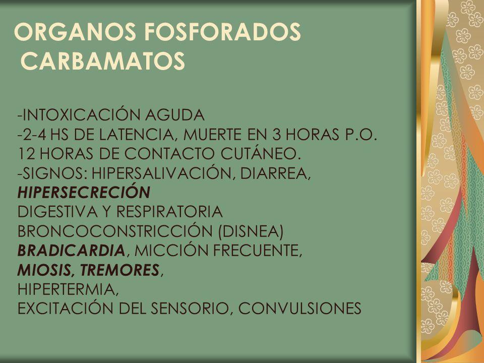 ORGANOS FOSFORADOS CARBAMATOS -INTOXICACIÓN AGUDA -2-4 HS DE LATENCIA, MUERTE EN 3 HORAS P.O. 12 HORAS DE CONTACTO CUTÁNEO. -SIGNOS: HIPERSALIVACIÓN,