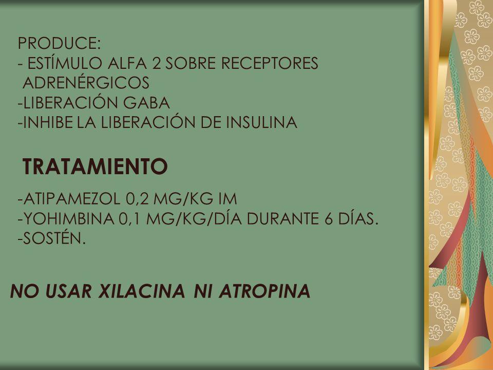 PRODUCE: - ESTÍMULO ALFA 2 SOBRE RECEPTORES ADRENÉRGICOS -LIBERACIÓN GABA -INHIBE LA LIBERACIÓN DE INSULINA TRATAMIENTO -ATIPAMEZOL 0,2 MG/KG IM -YOHI