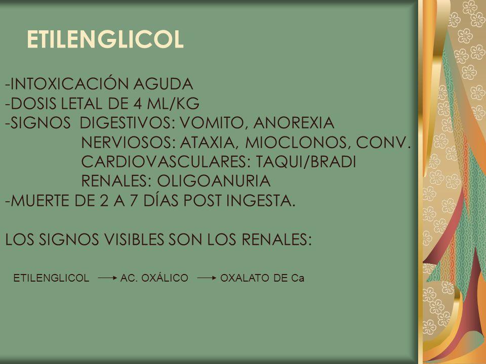 ETILENGLICOL -INTOXICACIÓN AGUDA -DOSIS LETAL DE 4 ML/KG -SIGNOS DIGESTIVOS: VOMITO, ANOREXIA NERVIOSOS: ATAXIA, MIOCLONOS, CONV. CARDIOVASCULARES: TA