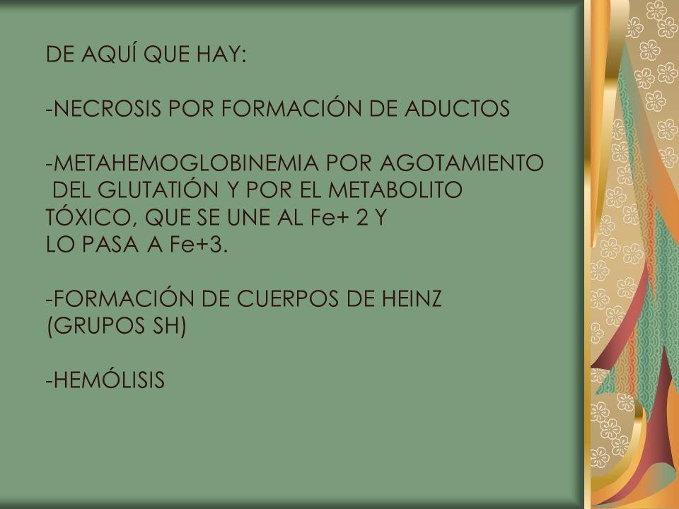 DE AQUÍ QUE HAY: -NECROSIS POR FORMACIÓN DE ADUCTOS -METAHEMOGLOBINEMIA POR AGOTAMIENTO DEL GLUTATIÓN Y POR EL METABOLITO TÓXICO, QUE SE UNE AL Fe+ 2