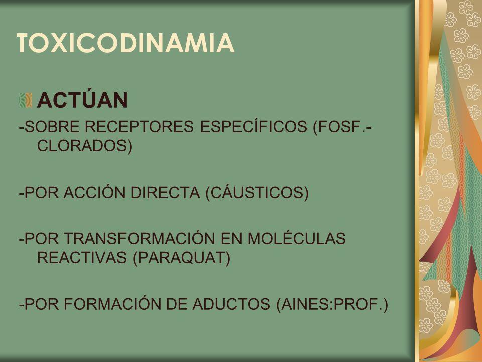 TOXICODINAMIA ACTÚAN -SOBRE RECEPTORES ESPECÍFICOS (FOSF.- CLORADOS) -POR ACCIÓN DIRECTA (CÁUSTICOS) -POR TRANSFORMACIÓN EN MOLÉCULAS REACTIVAS (PARAQ