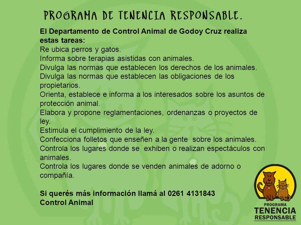 El Departamento de Control Animal de Godoy Cruz realiza estas tareas: Re ubica perros y gatos. Informa sobre terapias asistidas con animales. Divulga