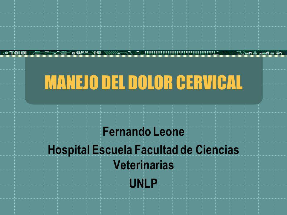 MANEJO DEL DOLOR CERVICAL Fernando Leone Hospital Escuela Facultad de Ciencias Veterinarias UNLP