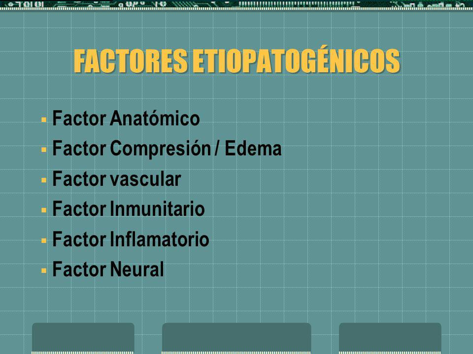FACTORES ETIOPATOGÉNICOS Factor Anatómico Factor Compresión / Edema Factor vascular Factor Inmunitario Factor Inflamatorio Factor Neural