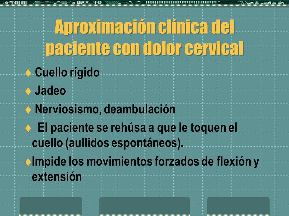 Aproximación clínica del paciente con dolor cervical Cuello rígido Jadeo Nerviosismo, deambulación El paciente se rehúsa a que le toquen el cuello (au