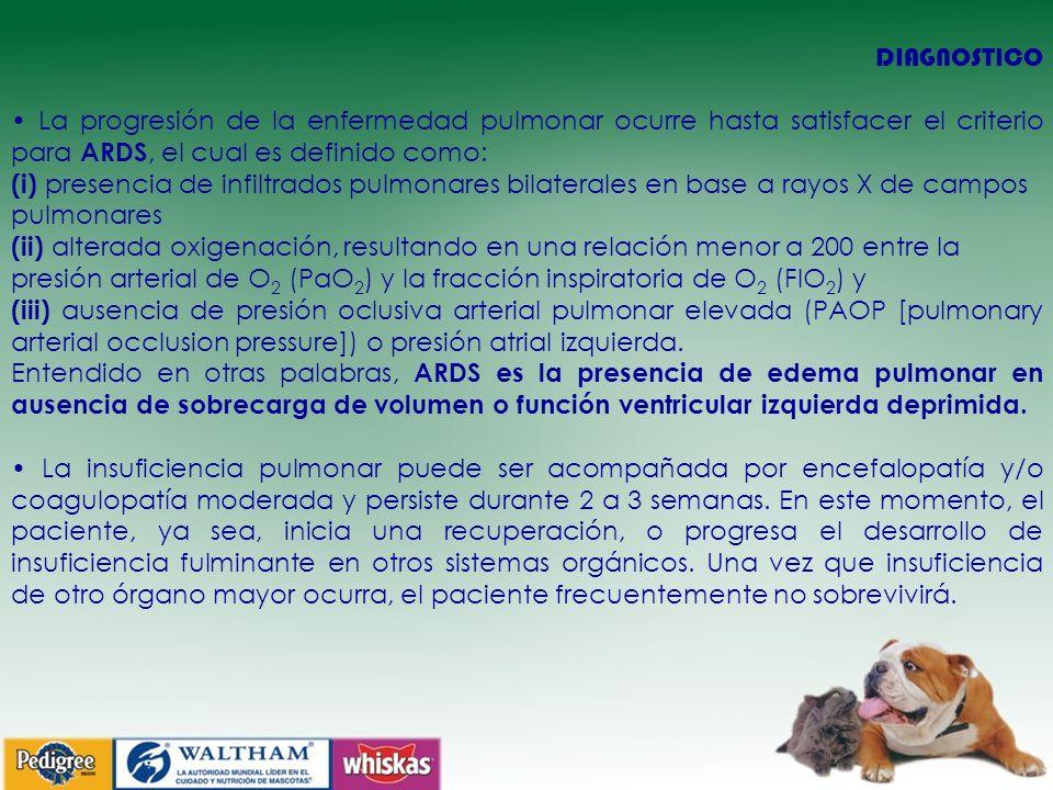 DIAGNOSTICO La progresión de la enfermedad pulmonar ocurre hasta satisfacer el criterio para ARDS, el cual es definido como: (i) presencia de infiltrados pulmonares bilaterales en base a rayos X de campos pulmonares (ii) alterada oxigenación, resultando en una relación menor a 200 entre la presión arterial de O 2 (PaO 2 ) y la fracción inspiratoria de O 2 (FIO 2 ) y (iii) ausencia de presión oclusiva arterial pulmonar elevada (PAOP [pulmonary arterial occlusion pressure]) o presión atrial izquierda.