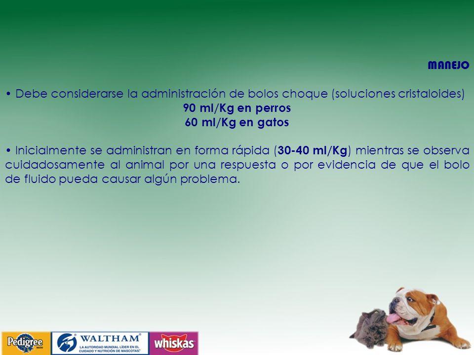 MANEJO Debe considerarse la administración de bolos choque (soluciones cristaloides) 90 ml/Kg en perros 60 ml/Kg en gatos Inicialmente se administran