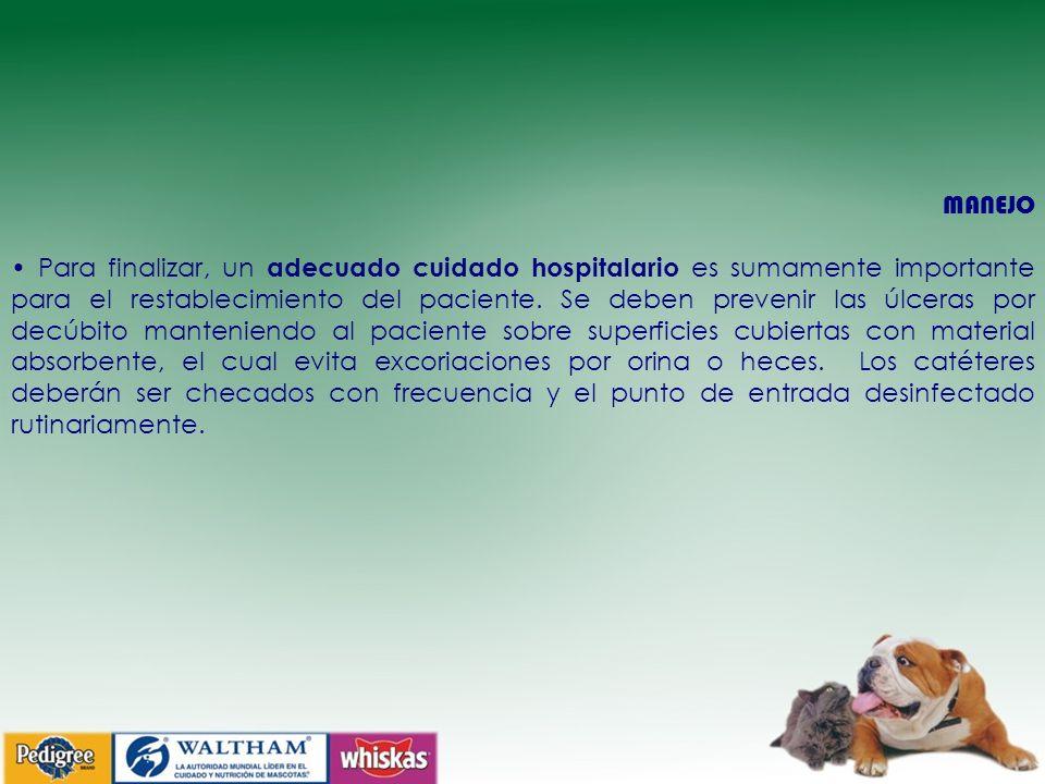 MANEJO Para finalizar, un adecuado cuidado hospitalario es sumamente importante para el restablecimiento del paciente.