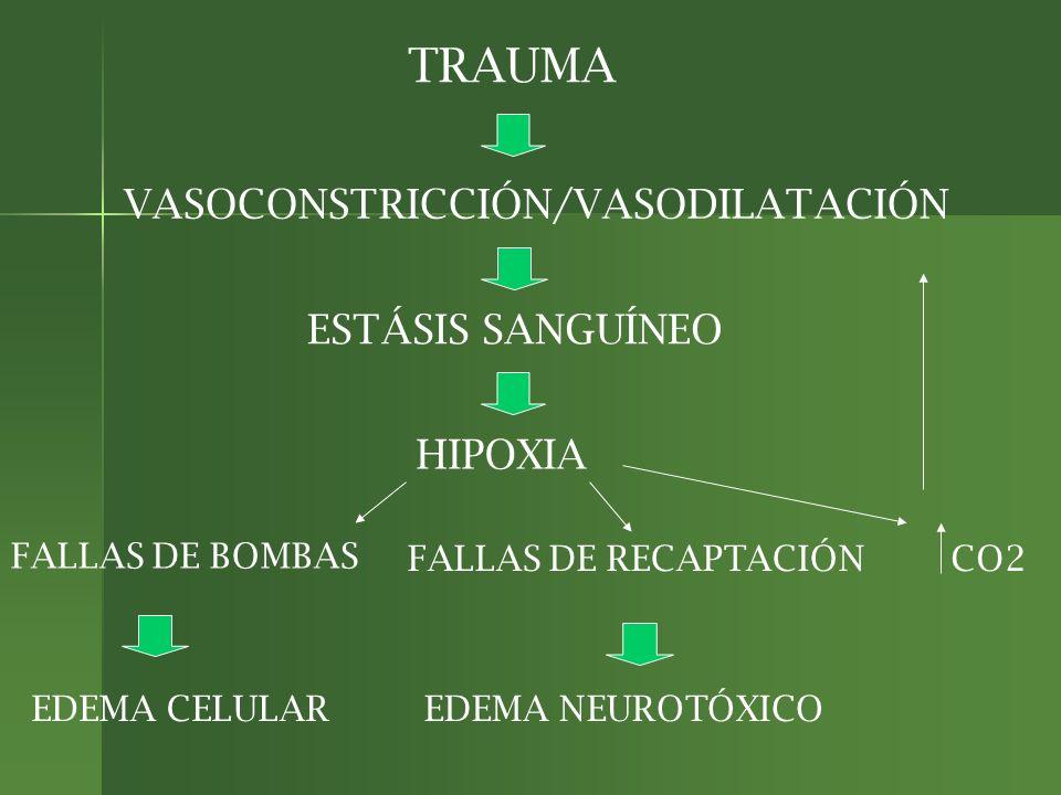 RESUMIENDO: EDEMA CITOTÓXICO (BOMBAS) EDEMA CITOTÓXICO (BOMBAS) EDEMA VASOGÉNICO (ENDOTELIOS) EDEMA VASOGÉNICO (ENDOTELIOS) EDEMA INTERSTICIAL (LCR) EDEMA INTERSTICIAL (LCR) EDEMA NEUROTÓXICO (GLUTAMATO) EDEMA NEUROTÓXICO (GLUTAMATO)