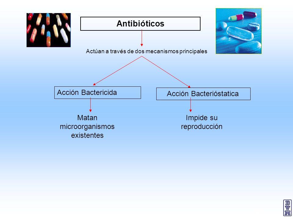 32 Antibióticos Actúan a través de dos mecanismos principales Acción Bactericida Acción Bacterióstatica Matan microorganismos existentes Impide su rep