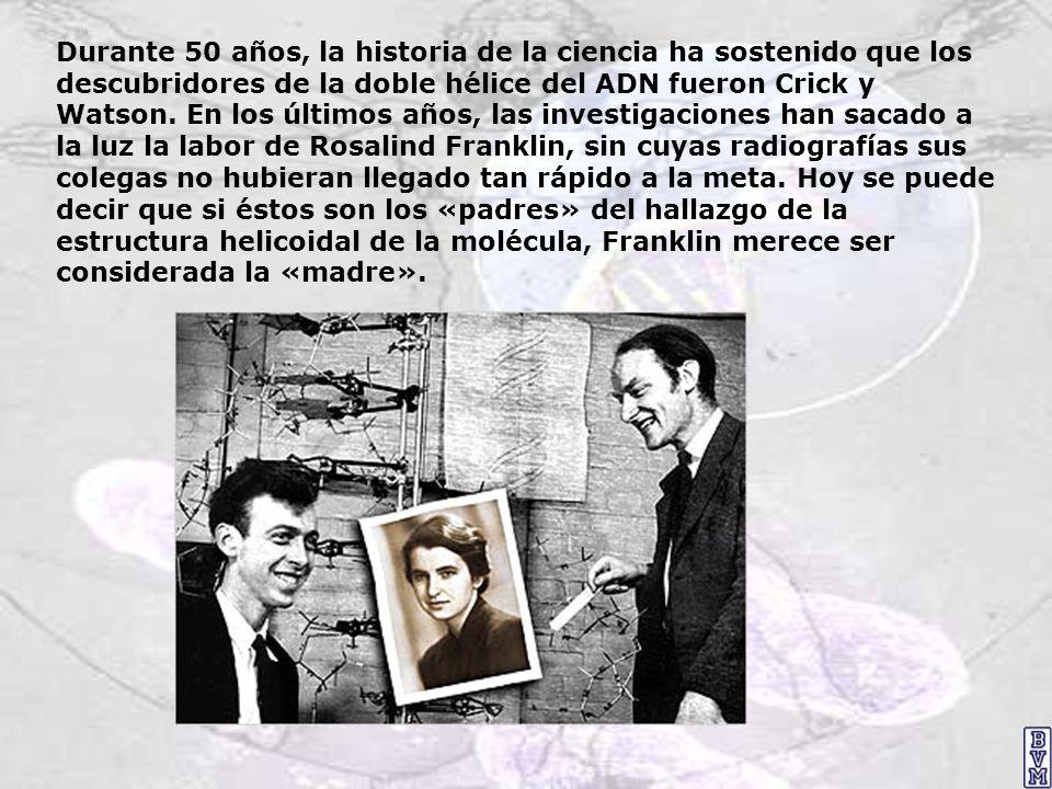 Durante 50 años, la historia de la ciencia ha sostenido que los descubridores de la doble hélice del ADN fueron Crick y Watson. En los últimos años, l