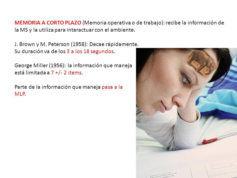 MEMORIA A CORTO PLAZO (Memoria operativa o de trabajo): recibe la información de la MS y la utiliza para interactuar con el ambiente. J. Brown y M. Pe