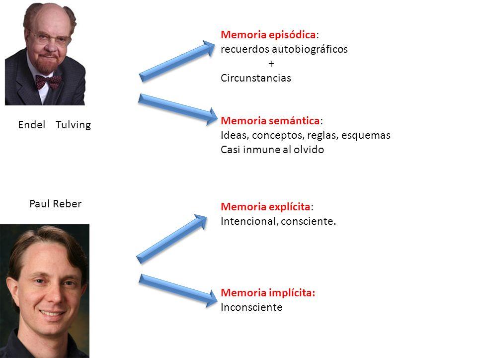 Endel Tulving Memoria episódica: recuerdos autobiográficos + Circunstancias Memoria semántica: Ideas, conceptos, reglas, esquemas Casi inmune al olvid