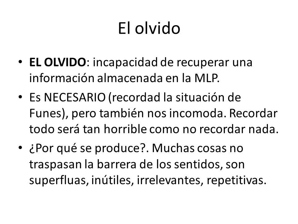 El olvido EL OLVIDO: incapacidad de recuperar una información almacenada en la MLP. Es NECESARIO (recordad la situación de Funes), pero también nos in