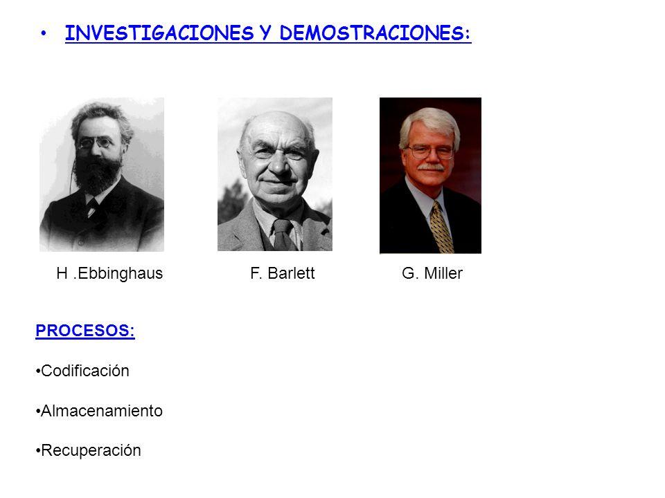 INVESTIGACIONES Y DEMOSTRACIONES: H.EbbinghausF. BarlettG. Miller PROCESOS: Codificación Almacenamiento Recuperación