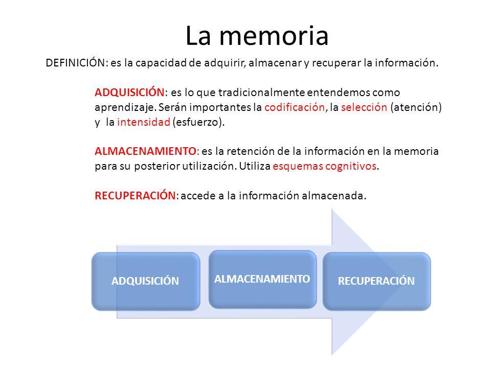 La memoria DEFINICIÓN: es la capacidad de adquirir, almacenar y recuperar la información. ADQUISICIÓN: es lo que tradicionalmente entendemos como apre