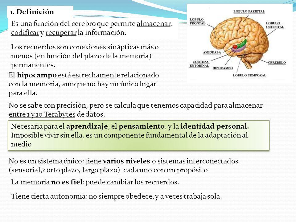 9.Reglas mnemotécnicas. A) La atención ayuda a fijar los contenidos con más solidez.