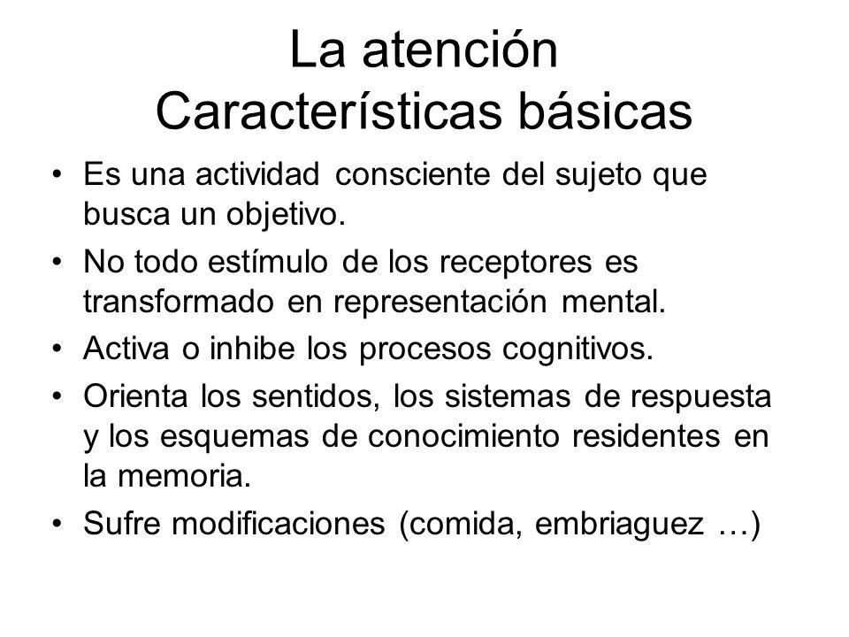 La atención Características básicas Es una actividad consciente del sujeto que busca un objetivo. No todo estímulo de los receptores es transformado e