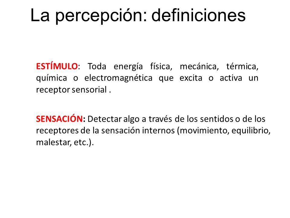 La percepción: definiciones ESTÍMULO: Toda energía física, mecánica, térmica, química o electromagnética que excita o activa un receptor sensorial. SE