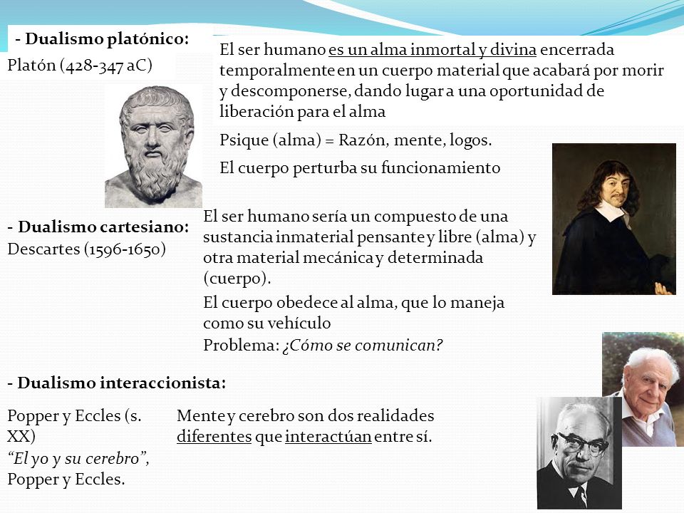 - Dualismo platónico: El ser humano es un alma inmortal y divina encerrada temporalmente en un cuerpo material que acabará por morir y descomponerse,
