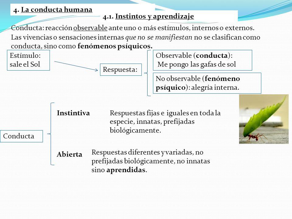 4. La conducta humana Conducta: reacción observable ante uno o más estímulos, internos o externos. Las vivencias o sensaciones internas que no se mani