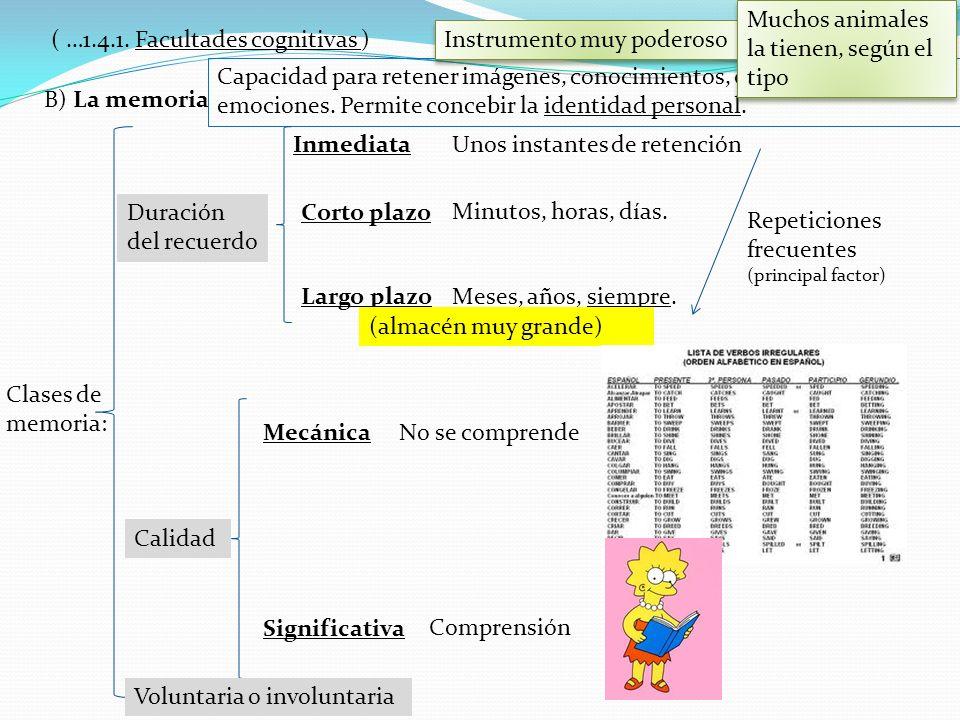 B) La memoria ( …1.4.1. Facultades cognitivas ) Capacidad para retener imágenes, conocimientos, experiencias y emociones. Permite concebir la identida