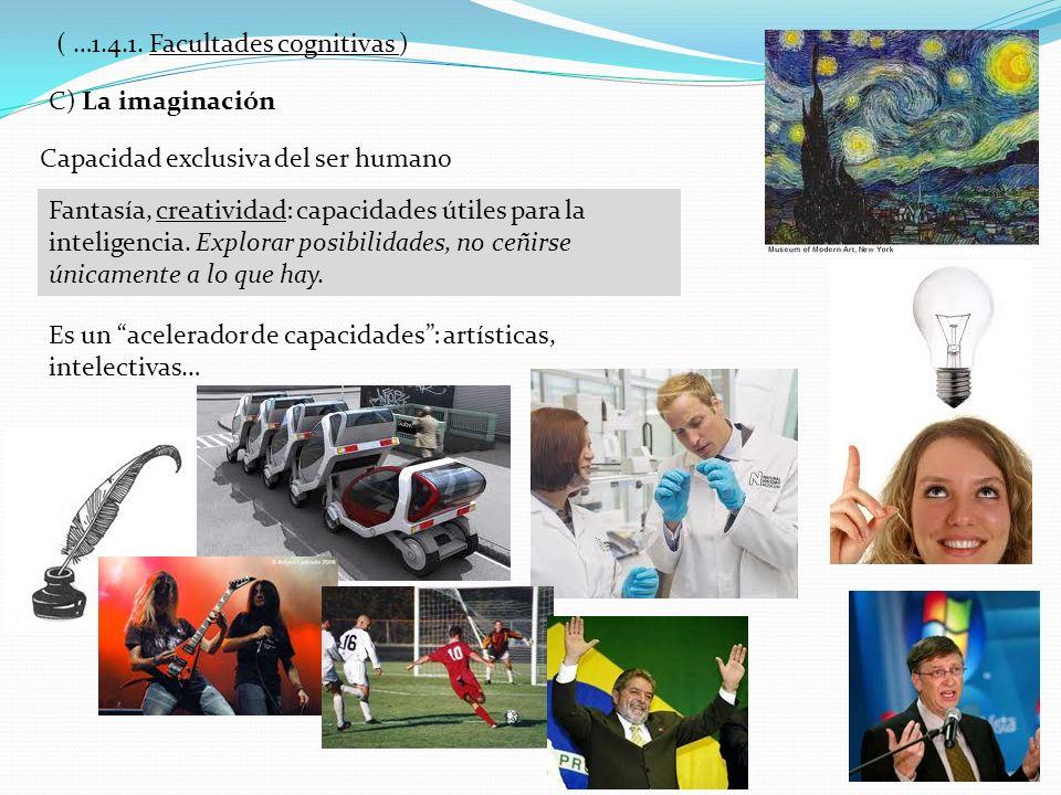C) La imaginación Capacidad exclusiva del ser humano Fantasía, creatividad: capacidades útiles para la inteligencia. Explorar posibilidades, no ceñirs