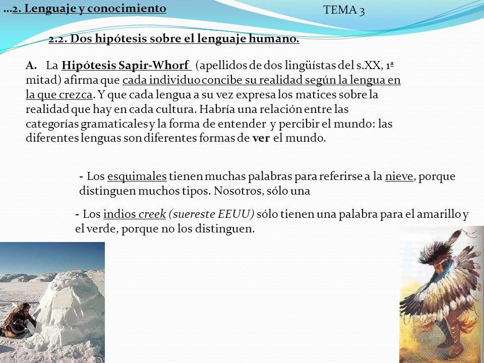…2.Lenguaje y conocimiento TEMA 3 B.