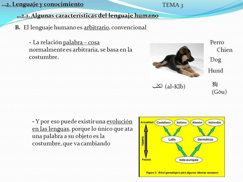 …2.Lenguaje y conocimiento TEMA 3 C.