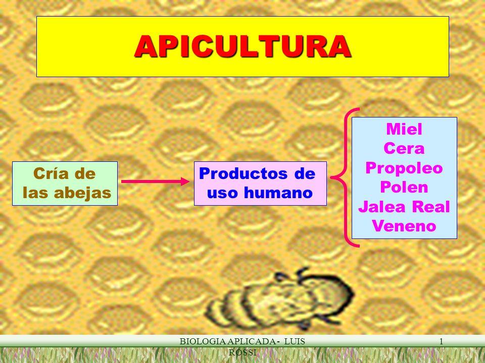 BIOLOGIA APLICADA - LUIS ROSSI 1 APICULTURA Cría de las abejas Productos de uso humano Miel Cera Propoleo Polen Jalea Real Veneno