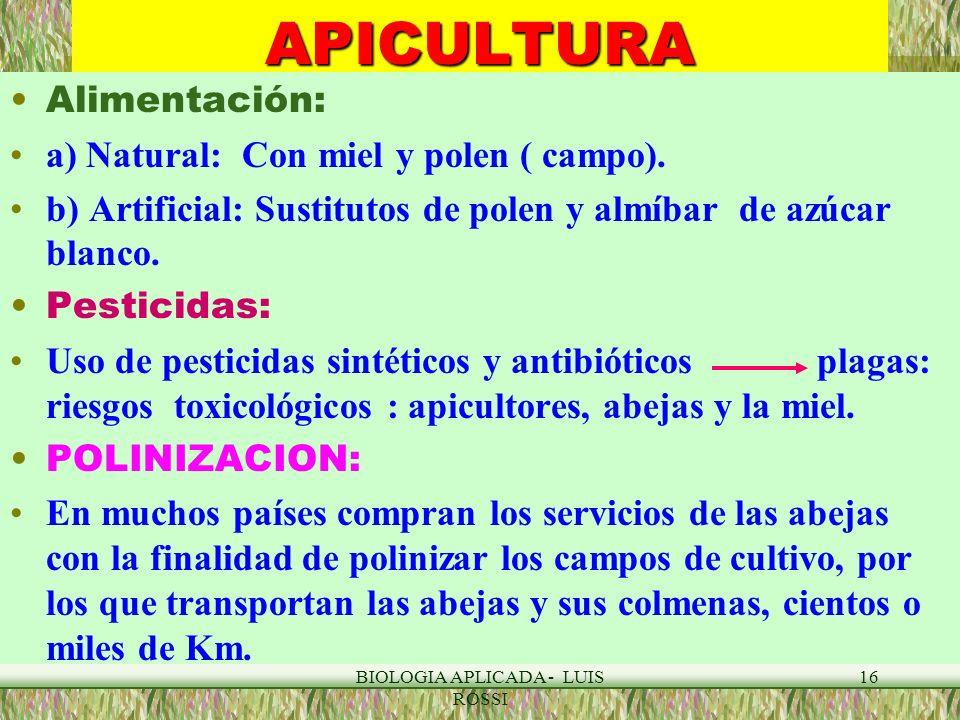 BIOLOGIA APLICADA - LUIS ROSSI 16APICULTURA Alimentación: a) Natural: Con miel y polen ( campo). b) Artificial: Sustitutos de polen y almíbar de azúca