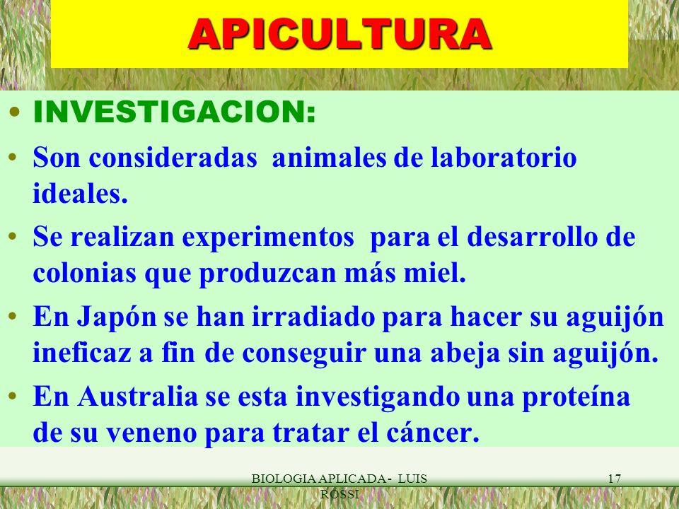 BIOLOGIA APLICADA - LUIS ROSSI 17APICULTURA INVESTIGACION: Son consideradas animales de laboratorio ideales. Se realizan experimentos para el desarrol